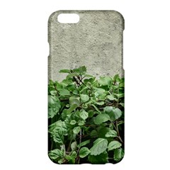 Plants Against Concrete Wall Background Apple iPhone 6 Plus/6S Plus Hardshell Case