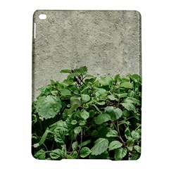 Plants Against Concrete Wall Background iPad Air 2 Hardshell Cases