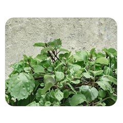 Plants Against Concrete Wall Background Double Sided Flano Blanket (Large)