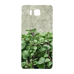 Plants Against Concrete Wall Background Samsung Galaxy Alpha Hardshell Back Case