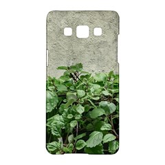 Plants Against Concrete Wall Background Samsung Galaxy A5 Hardshell Case