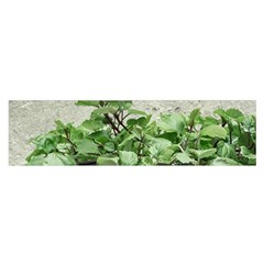 Plants Against Concrete Wall Background Satin Scarf (Oblong)
