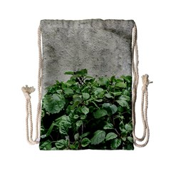 Plants Against Concrete Wall Background Drawstring Bag (Small)