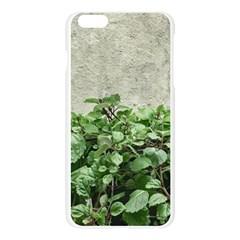 Plants Against Concrete Wall Background Apple Seamless iPhone 6 Plus/6S Plus Case (Transparent)