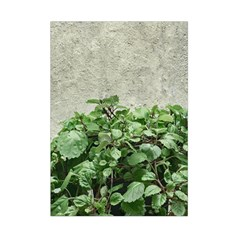 Plants Against Concrete Wall Background Small Tapestry