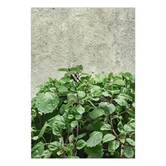 Plants Against Concrete Wall Background Large Tapestry