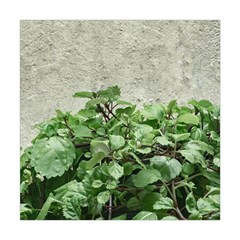 Plants Against Concrete Wall Background Square Tapestry (Large)
