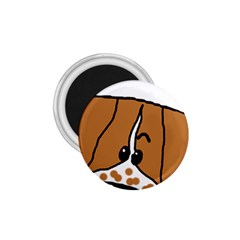 Peeping Brittany Spaniel 1.75  Magnets