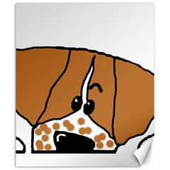 Peeping Brittany Spaniel Canvas 20  x 24