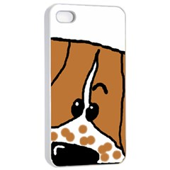 Peeping Brittany Spaniel Apple iPhone 4/4s Seamless Case (White)