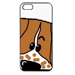 Peeping Brittany Spaniel Apple iPhone 5 Seamless Case (Black)