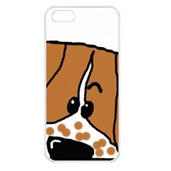 Peeping Brittany Spaniel Apple iPhone 5 Seamless Case (White)