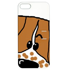 Peeping Brittany Spaniel Apple iPhone 5 Hardshell Case with Stand