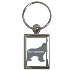 Newfie Name Silo Grey Key Chains (Rectangle)