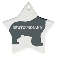Newfie Name Silo Grey Star Ornament (Two Sides)