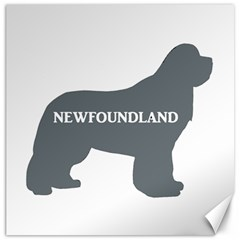 Newfie Name Silo Grey Canvas 20  x 20