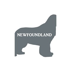 Newfie Name Silo Grey Shower Curtain 48  x 72  (Small)