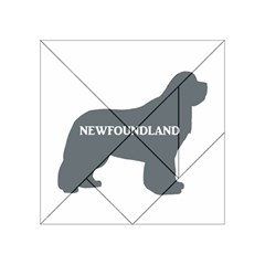 Newfie Name Silo Grey Acrylic Tangram Puzzle (4  x 4 )