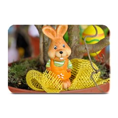 Easter Hare Easter Bunny Plate Mats