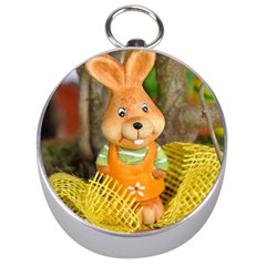 Easter Hare Easter Bunny Silver Compasses