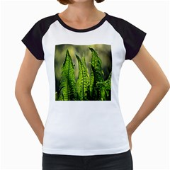 Fern Ferns Green Nature Foliage Women s Cap Sleeve T