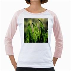 Fern Ferns Green Nature Foliage Girly Raglans