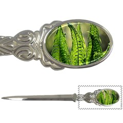 Fern Ferns Green Nature Foliage Letter Openers