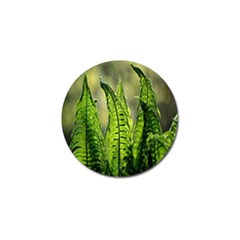 Fern Ferns Green Nature Foliage Golf Ball Marker