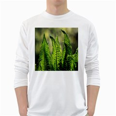 Fern Ferns Green Nature Foliage White Long Sleeve T-Shirts