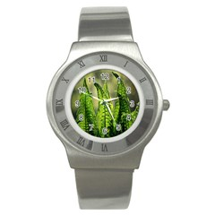 Fern Ferns Green Nature Foliage Stainless Steel Watch