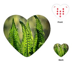 Fern Ferns Green Nature Foliage Playing Cards (Heart)