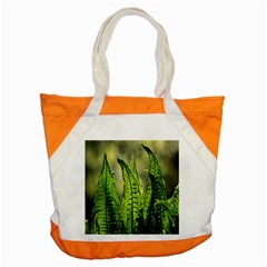 Fern Ferns Green Nature Foliage Accent Tote Bag