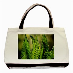 Fern Ferns Green Nature Foliage Basic Tote Bag (Two Sides)