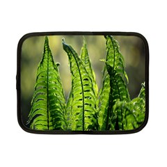 Fern Ferns Green Nature Foliage Netbook Case (Small)