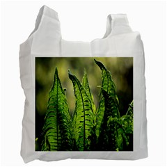 Fern Ferns Green Nature Foliage Recycle Bag (One Side)
