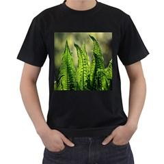 Fern Ferns Green Nature Foliage Men s T-Shirt (Black)