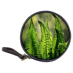 Fern Ferns Green Nature Foliage Classic 20-CD Wallets