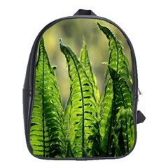 Fern Ferns Green Nature Foliage School Bags(Large)
