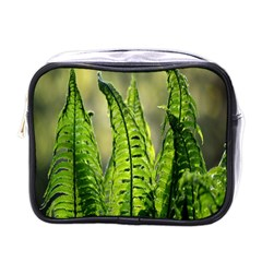Fern Ferns Green Nature Foliage Mini Toiletries Bags