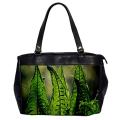 Fern Ferns Green Nature Foliage Office Handbags