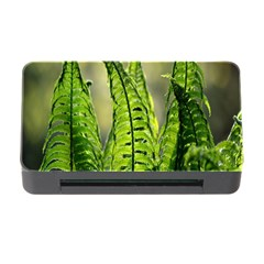 Fern Ferns Green Nature Foliage Memory Card Reader with CF