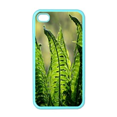 Fern Ferns Green Nature Foliage Apple iPhone 4 Case (Color)