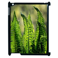 Fern Ferns Green Nature Foliage Apple iPad 2 Case (Black)