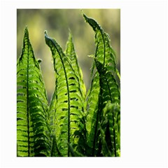 Fern Ferns Green Nature Foliage Large Garden Flag (Two Sides)