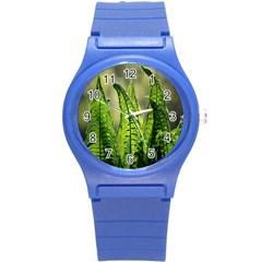 Fern Ferns Green Nature Foliage Round Plastic Sport Watch (S)