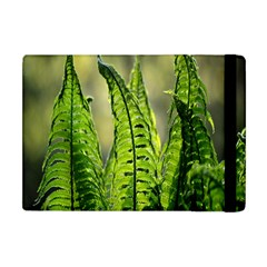 Fern Ferns Green Nature Foliage Apple iPad Mini Flip Case