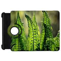 Fern Ferns Green Nature Foliage Kindle Fire HD 7