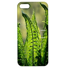 Fern Ferns Green Nature Foliage Apple iPhone 5 Hardshell Case with Stand
