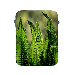 Fern Ferns Green Nature Foliage Apple iPad 2/3/4 Protective Soft Cases