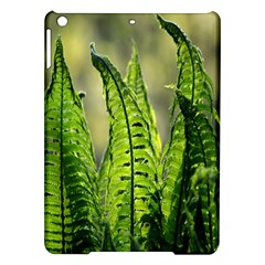 Fern Ferns Green Nature Foliage iPad Air Hardshell Cases